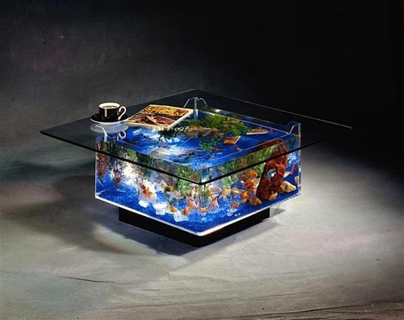 aquarium w rfel als wohnzimmertisch und barsche fische m bel. Black Bedroom Furniture Sets. Home Design Ideas