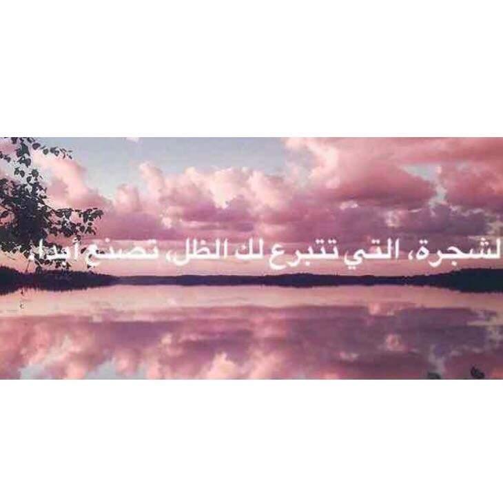 Liebe arabische sprüche Arabische Liebessprüche