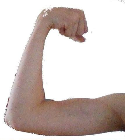 ich - (Muskeln, Schwester)