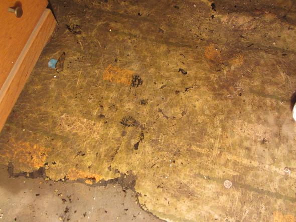 Boden4 - (Asbest, Bodenbelag)