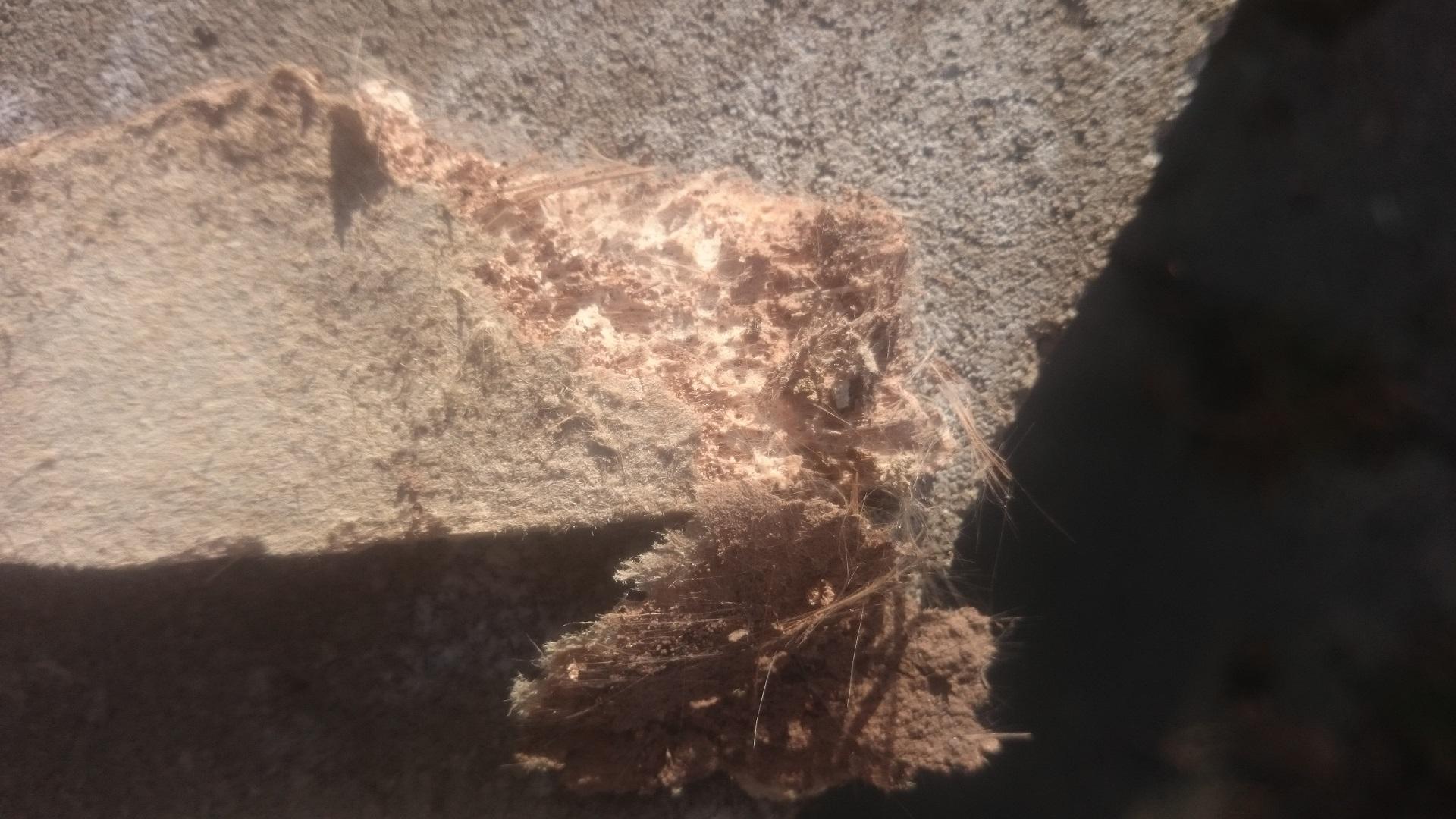 asbest in trockenbaudecke sanierung trockenbau. Black Bedroom Furniture Sets. Home Design Ideas