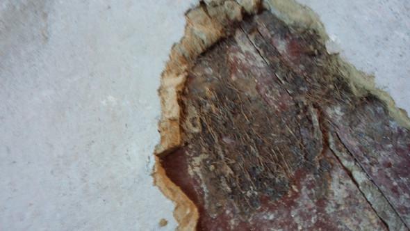 Hervorragend Asbest unter Teppich? BP82