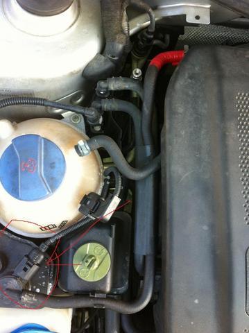Foto von dem Teil und angebissen Schlauch - (Auto, Audi A3 8L)
