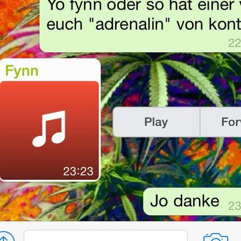 Solche audios - keine voice mails! - (Musik, iPhone, Apple)