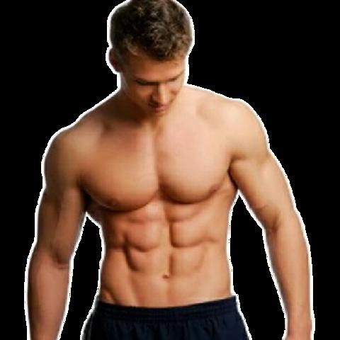 Oberkörper - (Sport, Ernährung, Fitness)