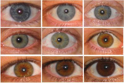 Augenfarbewelche Passt Zu Was Für Haaren Aussehen Farbe Style