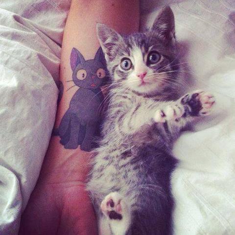 Katze auf dem tattoo - (Anime, Katze, Manga)