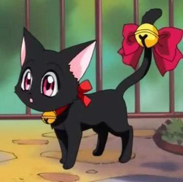 - (Tiere, Anime, Katze)