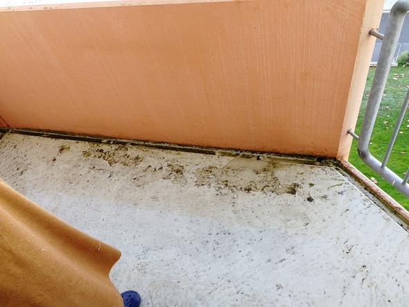 Balkon Beschadigt Recht Auf Beseitigung Mietrecht Miete