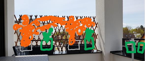 Balkonbepflanzung?