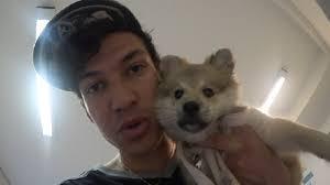 Cheng und Cookie - (Hund, Rasse)