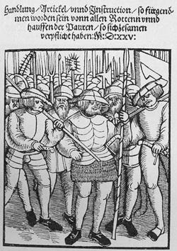 Bauernkrieg 12 Artikel (1) - (Sprache, Geschichte, Expertenthema)