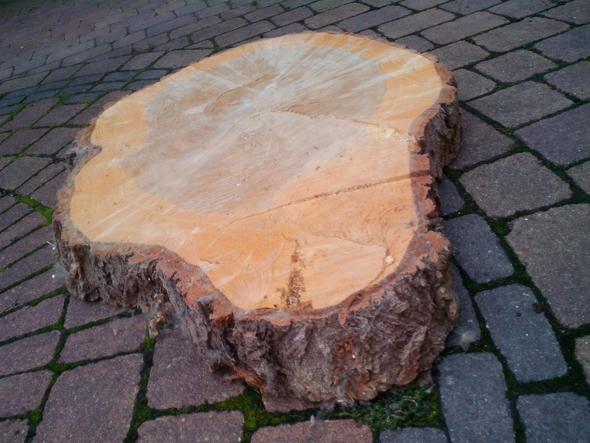 Baumscheibe bearbeiten hobby holz tisch - Deko aus holzstamm ...