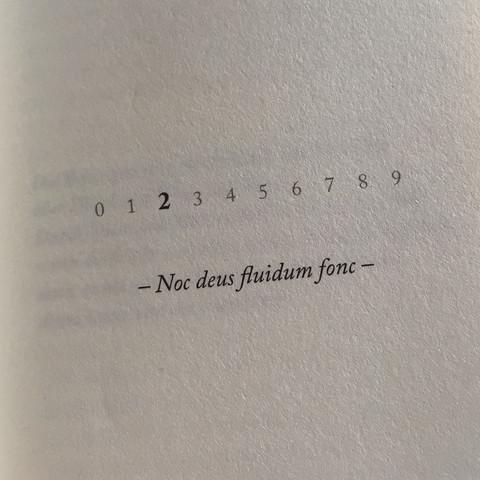 Zitle - (Buch, Übersetzung, Bedeutung)