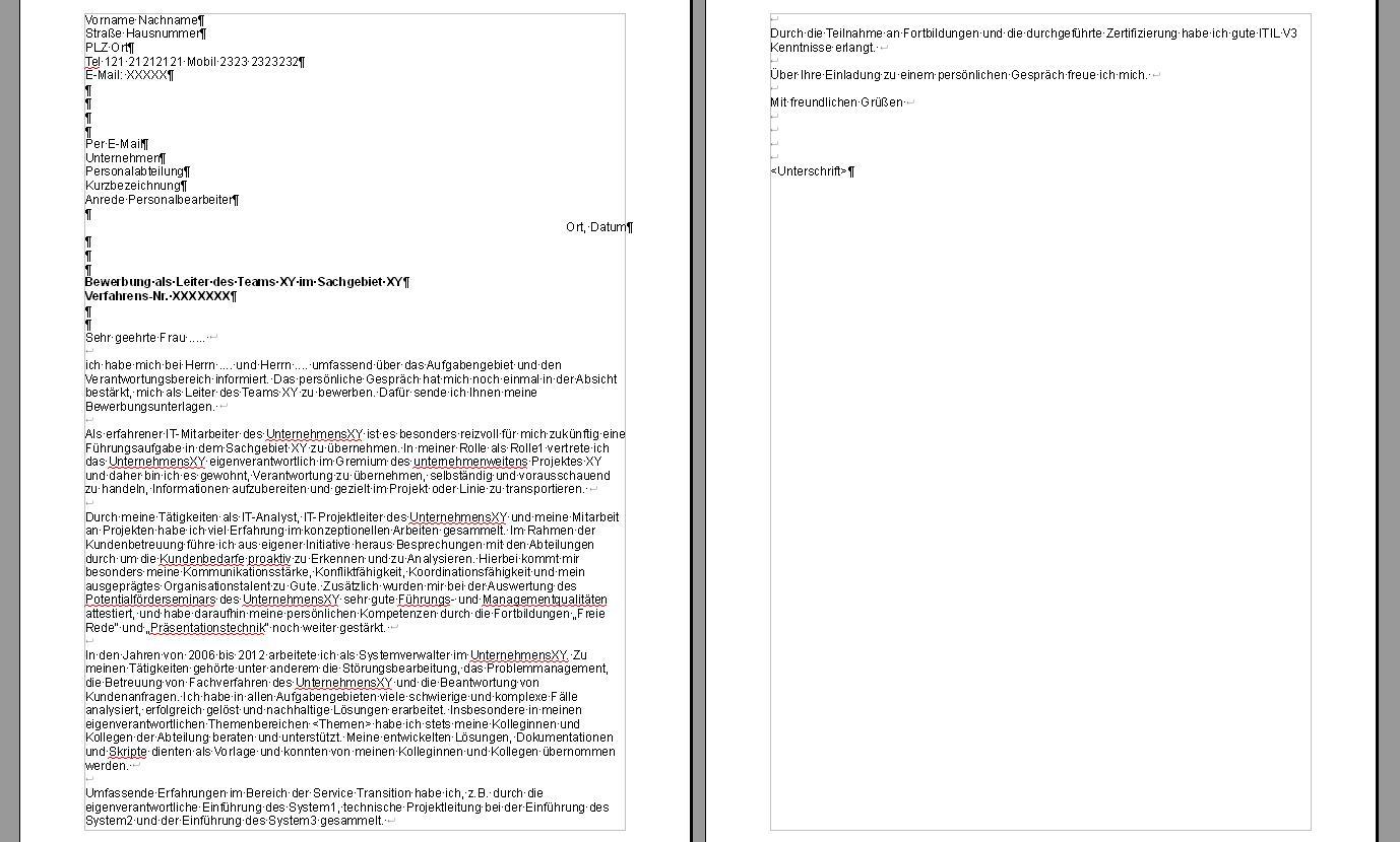 Bewerbungsanschreiben für IT Team Leitung Stelle bewerten