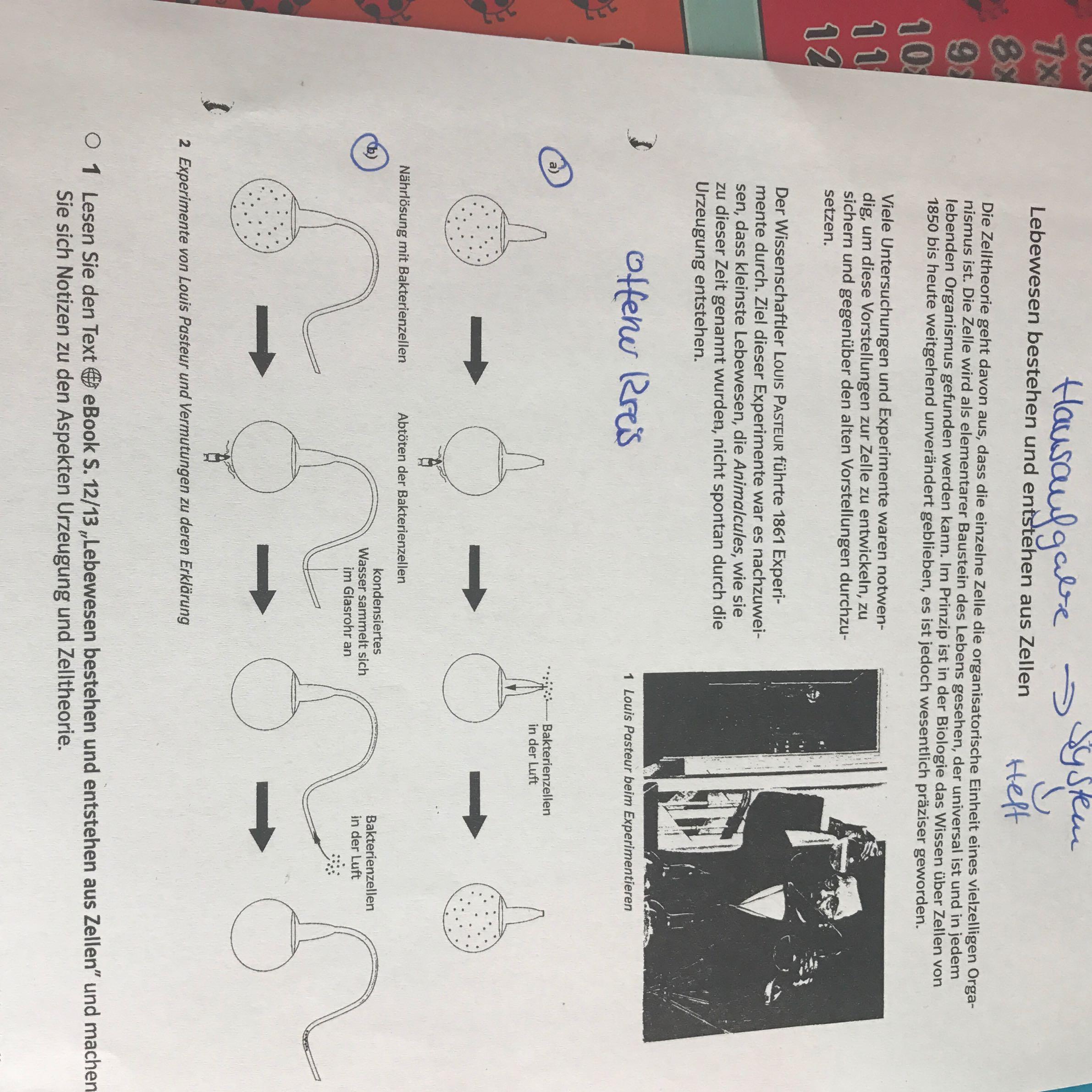 Biologie Hausaufgaben Hilfe? (Schule, Bio, Oberstufe)