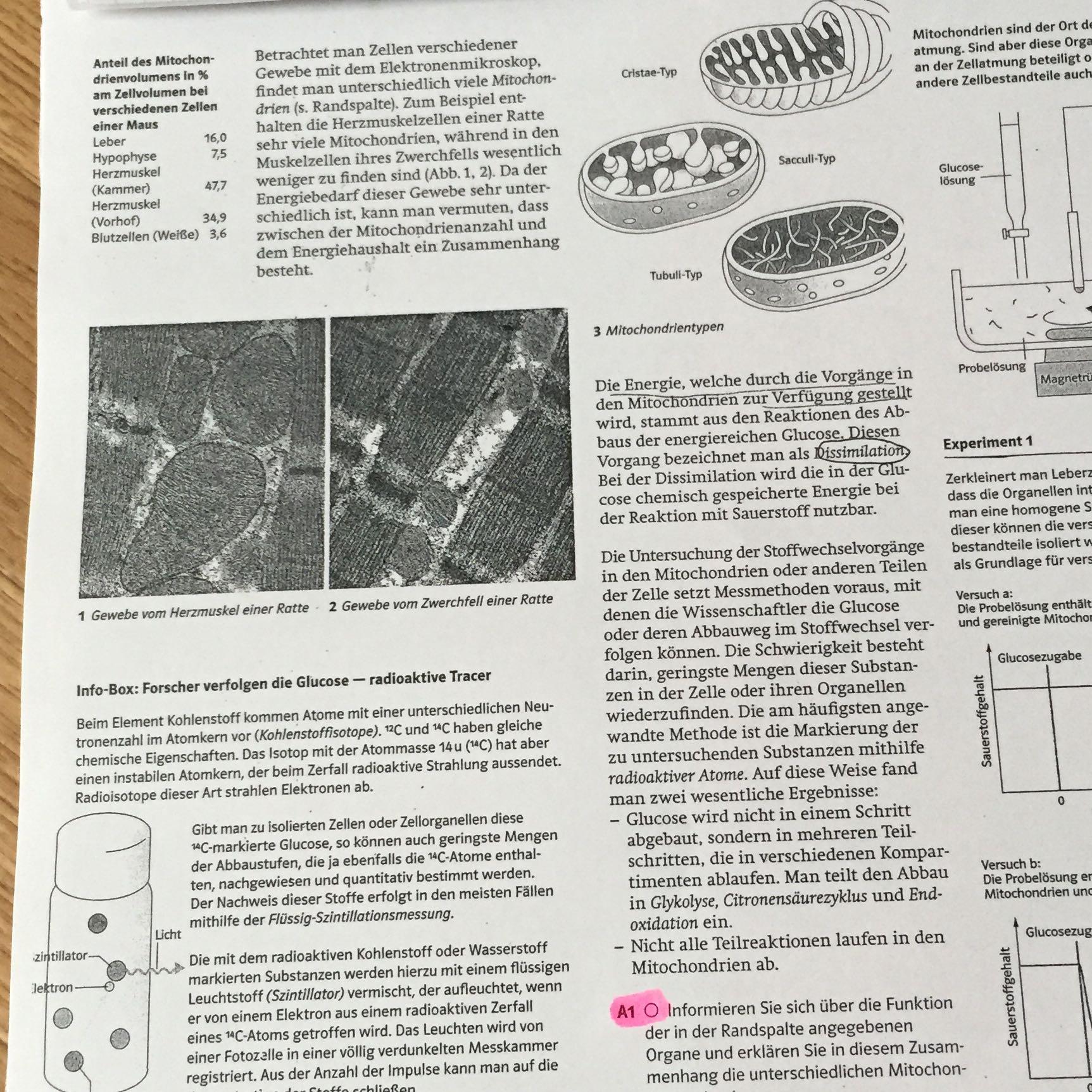 Biologie? Ich brauch dringend Hilfe Übungen für die Klausur? (Bio)