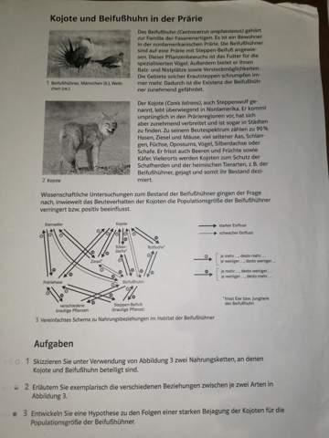 Biologie Nahrungskette, Artbeziehungen?
