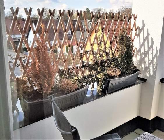 Bitte Hilfe zur Balkonbepflanzung?