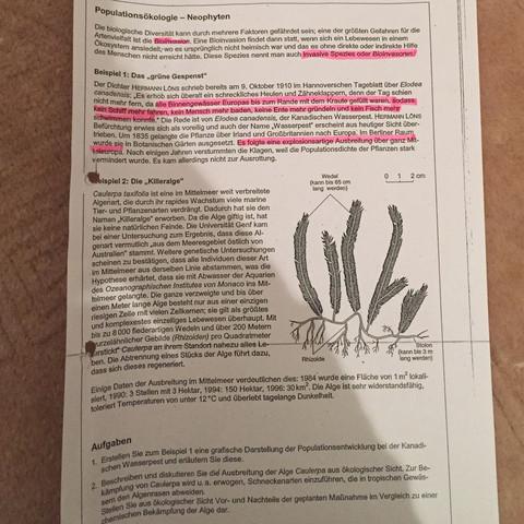 Hier ist das Arbeitsblatt  - (Biologie, Klausur)
