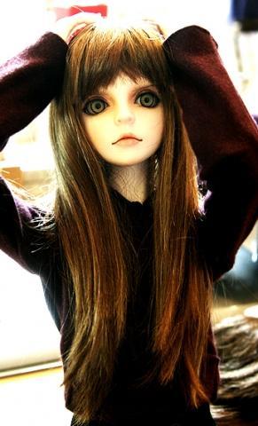 - (Shop, Doll, BJD)