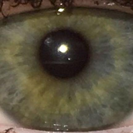 Grün oder blau?  - (Augen, blau, grün)