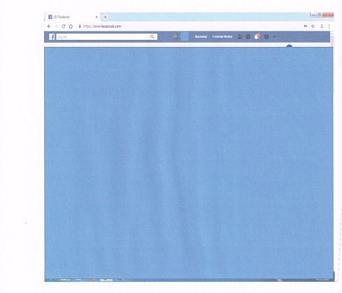 - (Computer, Internet, blauer Balken Facebook)