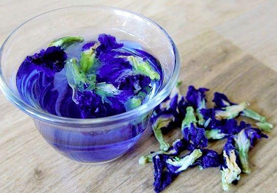 синий тайский чай полезные свойства