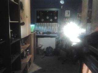 Von der Türaus.Wände sind hell+dunkelblau.Teppich ist Braun. - (Farbe, Zimmer, Dekoration)