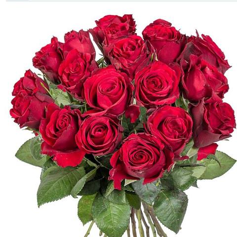 Blumen Bestellen Von Aldilidl Geschenk Rosen Muttertag