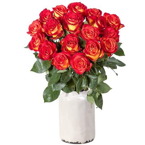 Lidlll - (Geschenk, bestellen, Blumen)