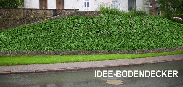 Das war meine Idee - (Garten, gartenbau, Gartenpflege)