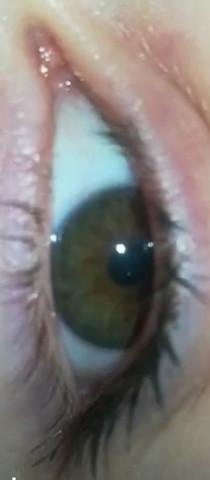 - (Augen, Farbe, braun)