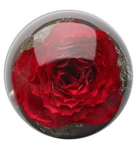 Brautstrauss Konservieren Und Zur Lampe Machen Acryl Floristik