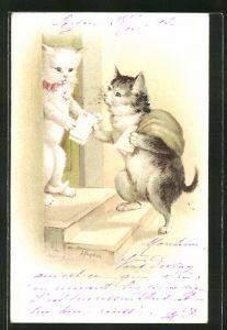 Briefträger Katzen?