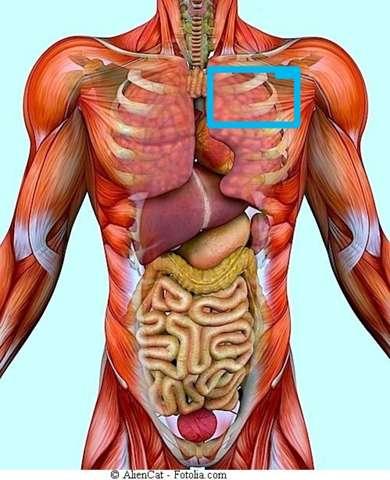 An linken brust der brennen Schmerzen Nähe