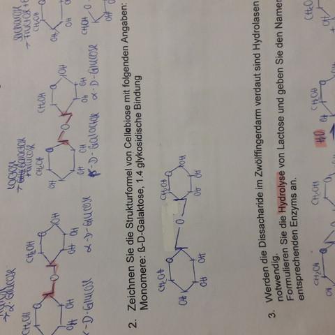 Chemie Strukturformel Cellobiose Aus ß D Galaktose Schule