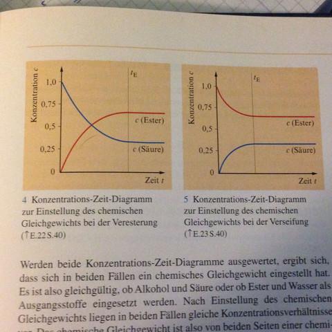 Chemisches Gleichgewicht (Diagramm)? (Schule, Chemie)