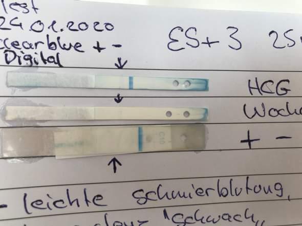 Clearblue Test, positiv oder Negativ EURE MEINUNG??