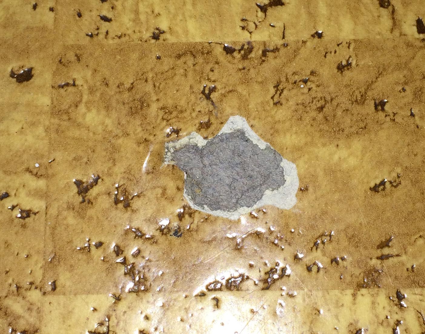 CushionVinyl mit Asbest? (Fussboden, Schadstoffe