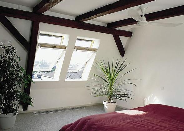 dachfenster und katzensicherung haustiere velux. Black Bedroom Furniture Sets. Home Design Ideas