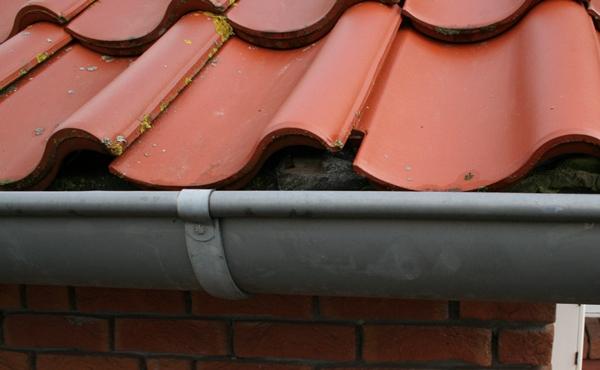 dachrinnenschutz gegen tiere im haus letzte ziegelreihe dach. Black Bedroom Furniture Sets. Home Design Ideas