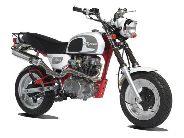SKyTEAM Cobra 125 - (Motorrad, Fahren ab 16)