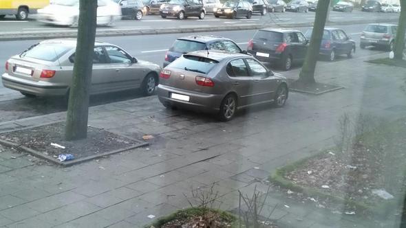 Parkendes Auto - (Verkehrsrecht, parken)