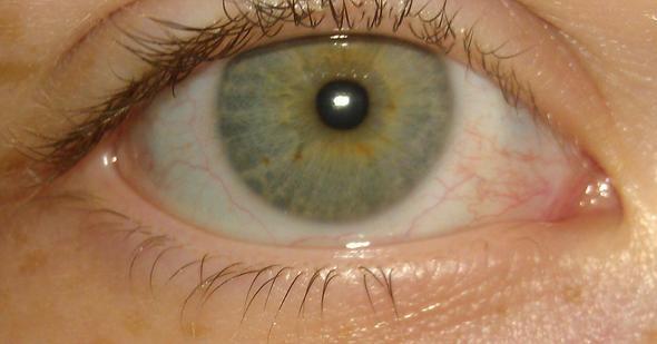 Das auge - (Augen, Farbe)