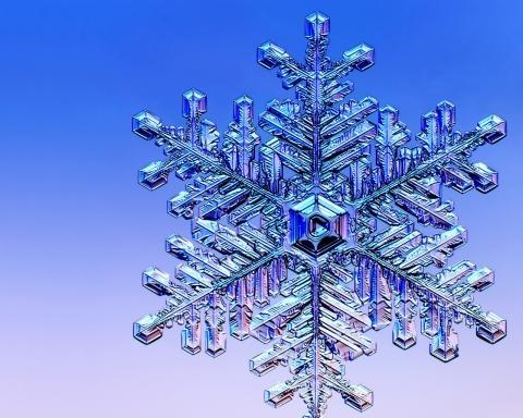 Bilduntertitel eingeben... - (Beauty, Winter, Geruch)