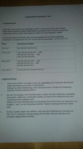 Der genetische Code. Kann jemand ein Auge auf meine Aufgaben werfen?