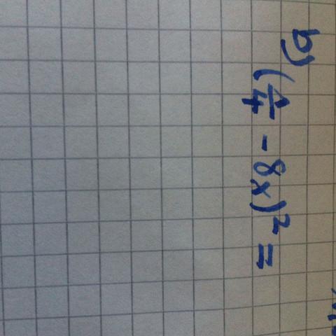 Hilfe?! - (Mathe, Bruch)