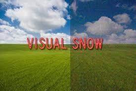 Die Pixel des Universums; Nehmen wir bei Visual Snow nur elektromagnetische Wellen wahr?