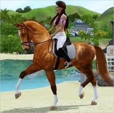 Dressur - (Dressur, Die Sims 3)